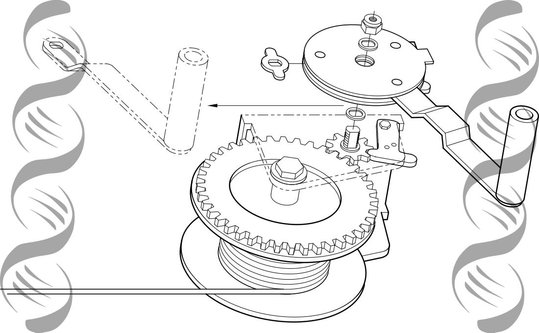 Engranajes desmontados que explican funcionamiento del aparato que forman todos juntos.