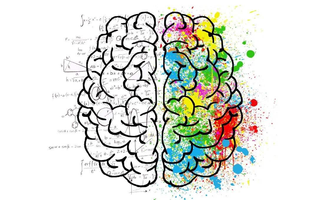 Las partes lógicas e imaginativas juntas en nuestro cerebro.